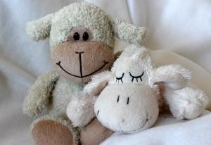 teddy-bears-1148352_960_720